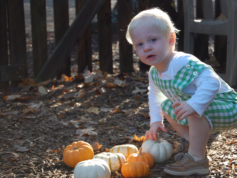 2-Year-Olds Enjoy Fall in Outdoor Classroom